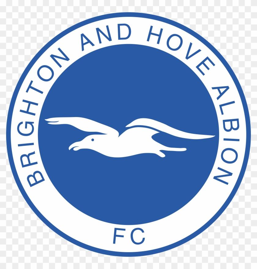 Brighton and Hove Albion – The Seagulls